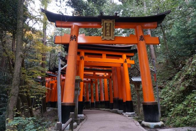 Fushimi Inari 3