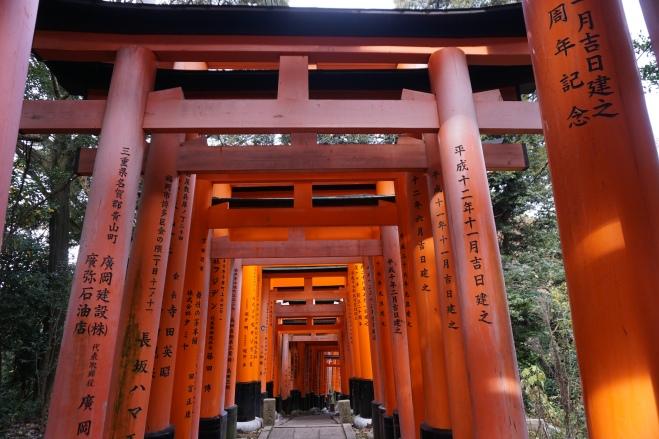 Fushimi Inari 6