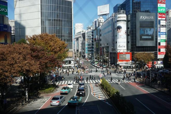 Shibuya Crossing 4