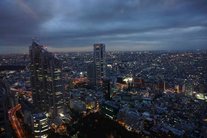View from Tokyo Government Building