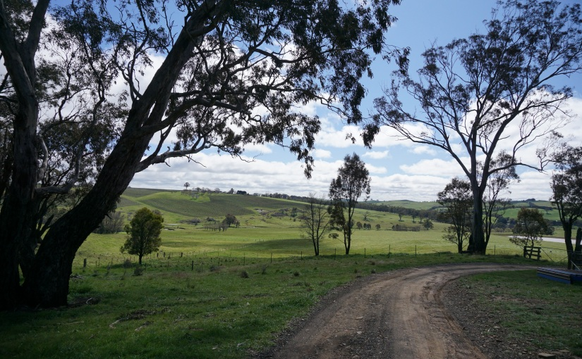 A weekend guide to Orange,NSW